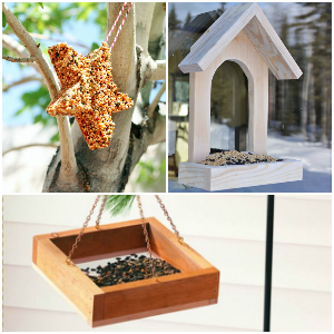 15 Unique DIY Birdfeeder That Will Attract The Birds