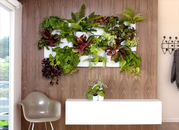 indoor garden 10 15 Indoor Garden Ideas To Make Your Home Cute