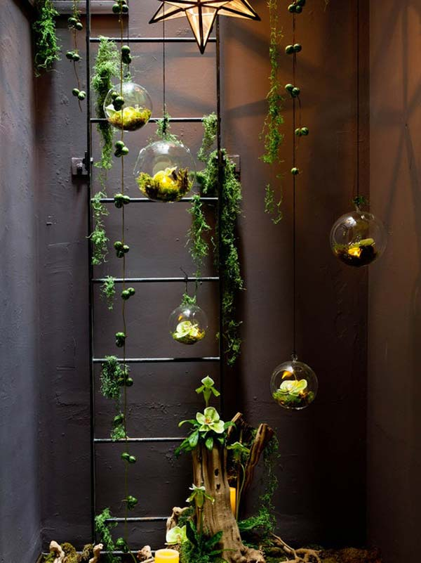 indoor garden6 15 Indoor Garden Ideas To Make Your Home Cute