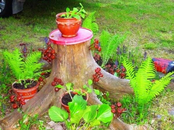 tree stump 15 1 Transform Tree Stump Into Home Decoration Items