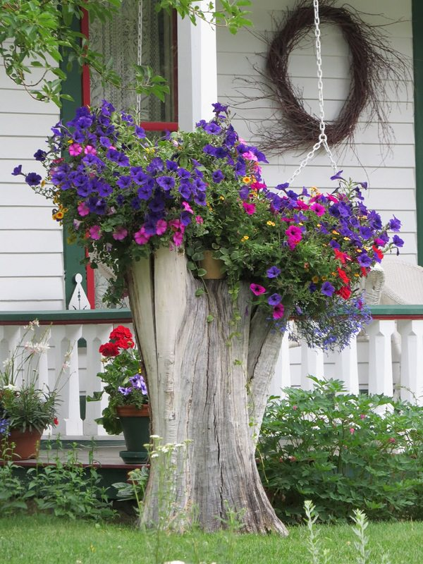 tree stump 3 Transform Tree Stump Into Home Decoration Items