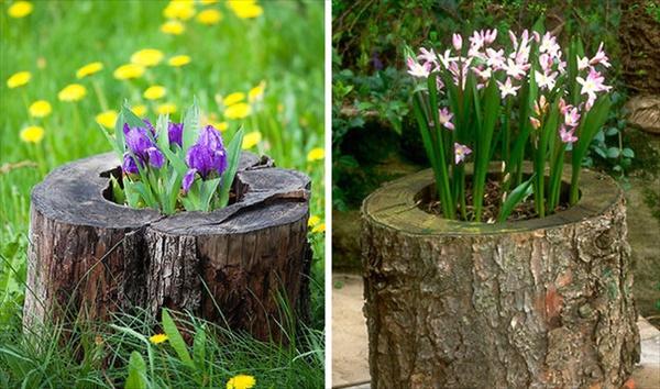 tree stump 8 Transform Tree Stump Into Home Decoration Items