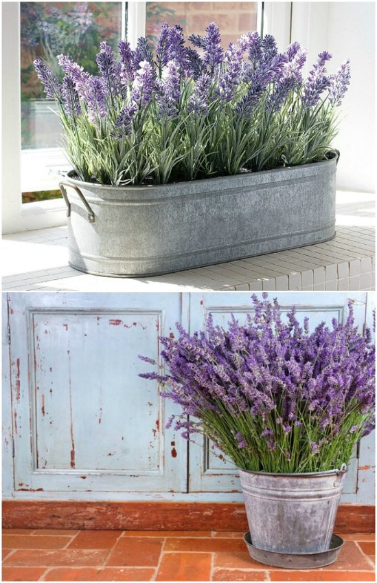 19 lavender tub diyncrafts spring porch decorations 16 Inspiring DIY Spring Porch Decorating Ideas