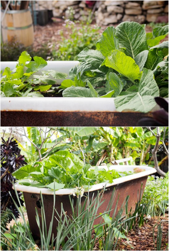 1 bathtub garden planter 15 Creative and Brilliant Ways to Incorporate Old Furniture