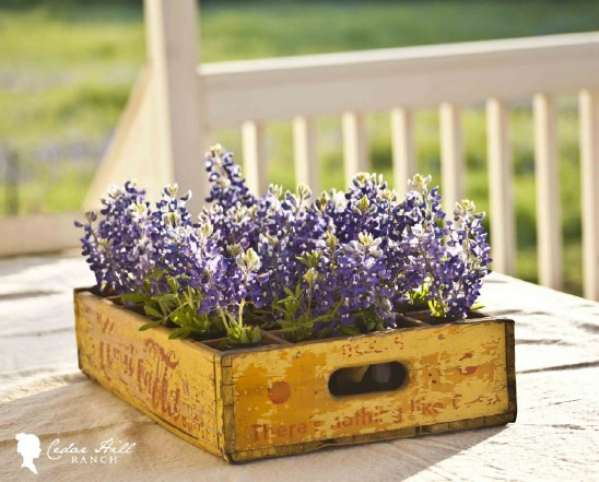 15 planter wooden crate repurposing projects diyncrafts Amazing and wonderful wooden crate craft ideas you should try