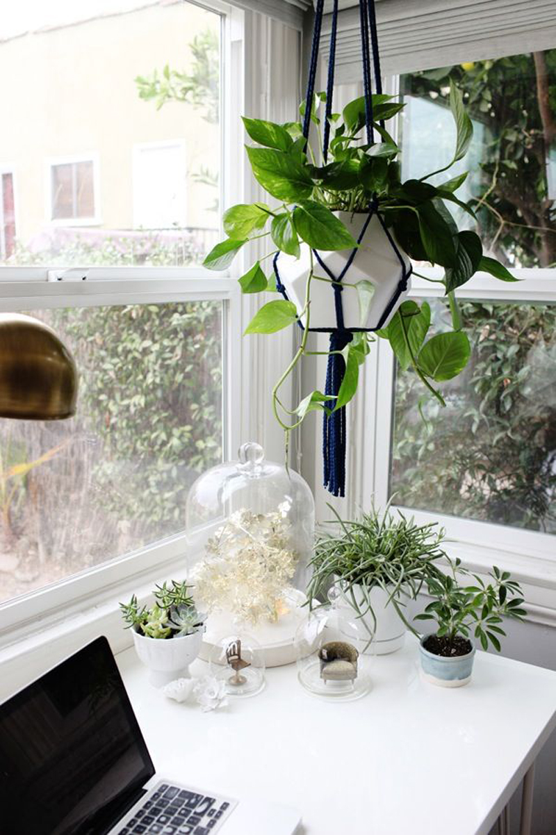 Macrame Eye Candy designrulz 3 DIY Macramé Plant Hanger Ideas That Will Beautify Your Home