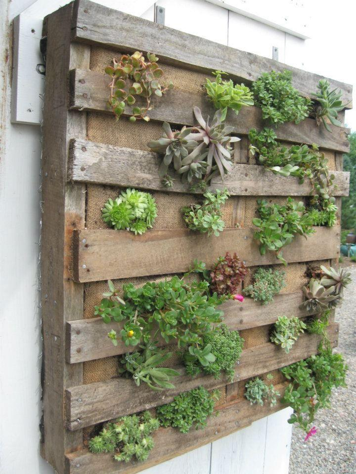 Interesting pallet planters for your garden to make it for Pallet succulent garden
