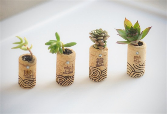 Cork Planters Interesting DIY Upcycling Ideas That Will Beautify Your Home
