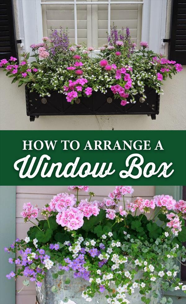 Lopsided window boxes idea