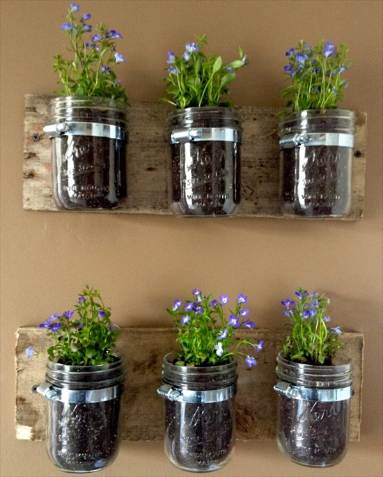 Mason Jar Planters Interesting DIY Upcycling Ideas That Will Beautify Your Home