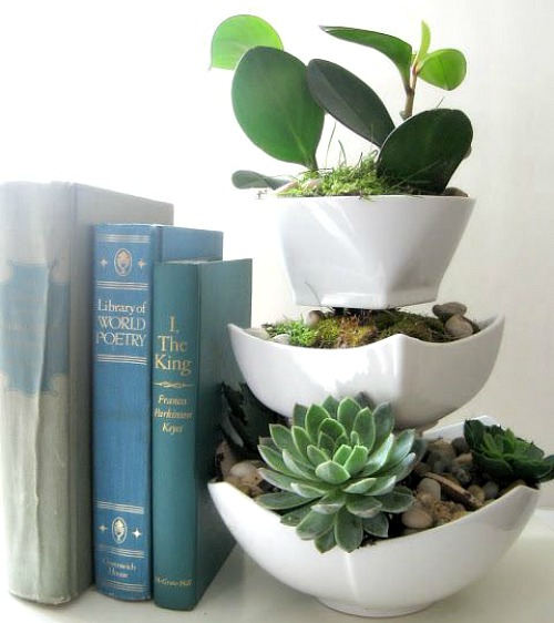 dollar store succulent planter Dollar Store Home Organizing Ideas