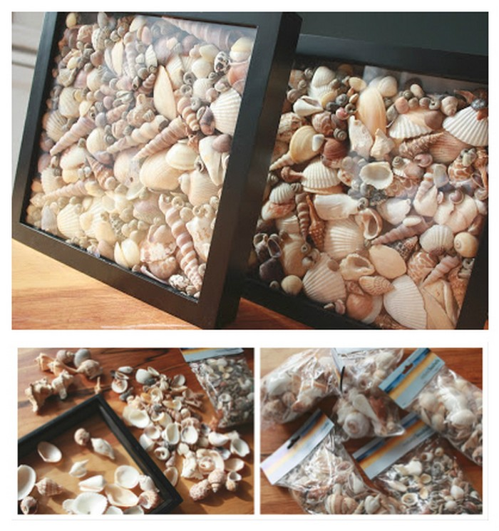 Simple Seashell Shadowboxes.. Stunning and Creative DIY Seashell Crafts