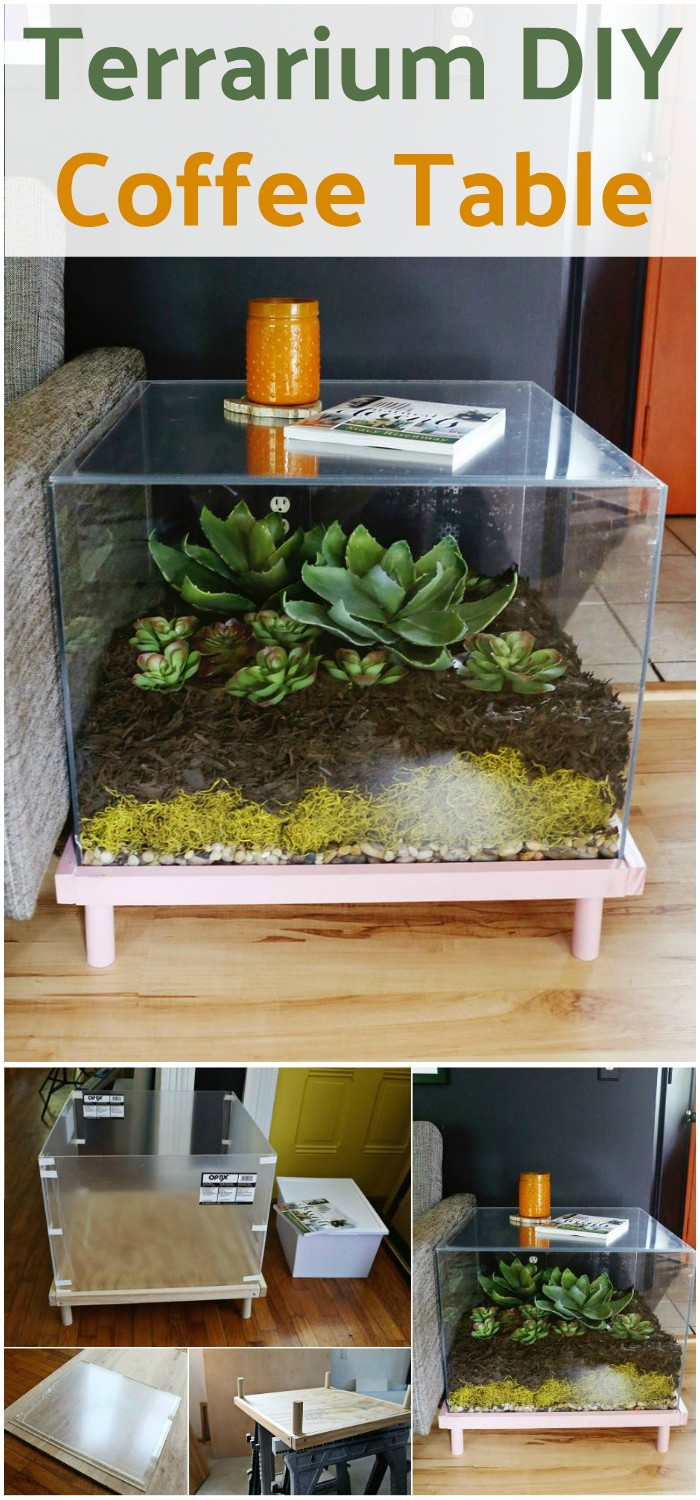 Self-Installed Terrarium Side Table or Coffee Table