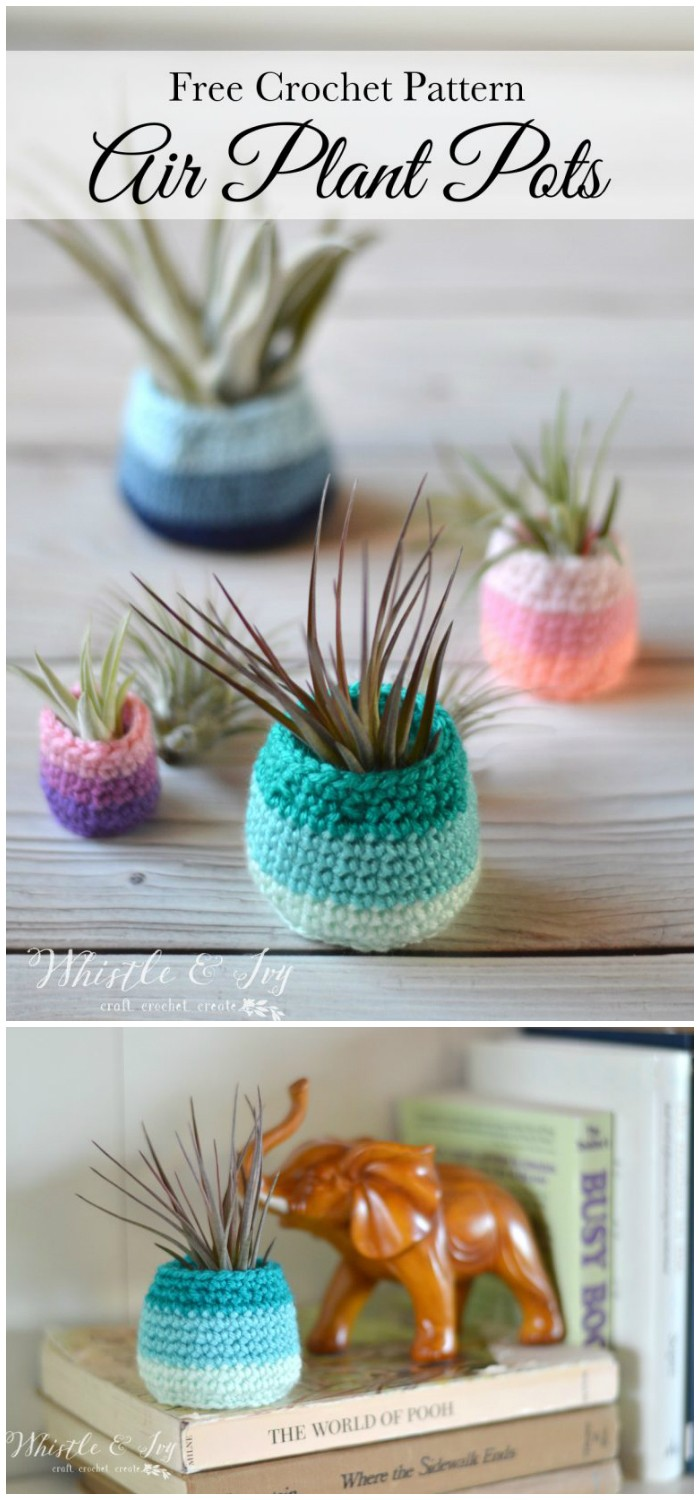 Crochet Air Plant Pot Pattern Free Crochet Pattern From Home To Accessories